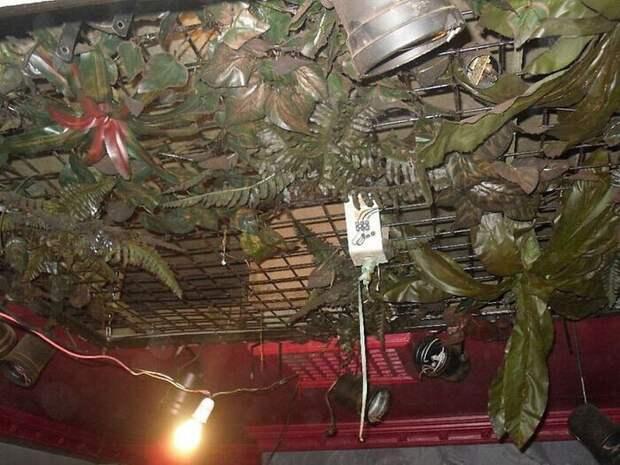 Путешествие в1993 год: как выглядит заброшенный британский паб, который был закрыт 27 лет назад