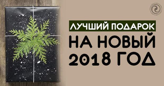 ЛУЧШИЙ ПОДАРОК НА НОВЫЙ 2018 ГОД