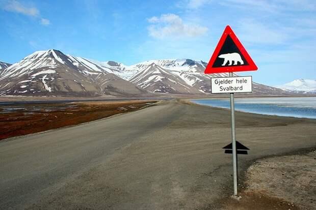 13 улётных фактов о Норвегии