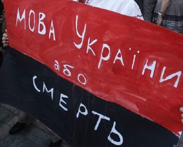 «Уехал бы и увёз всю семью»: известный украинский врач назвал унижением тотальную украинизацию