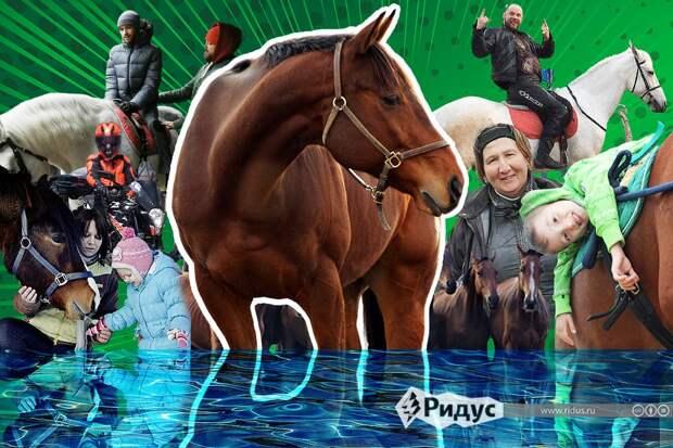 Что угрожает старейшему конному клубу Москвы, где занимаются дети