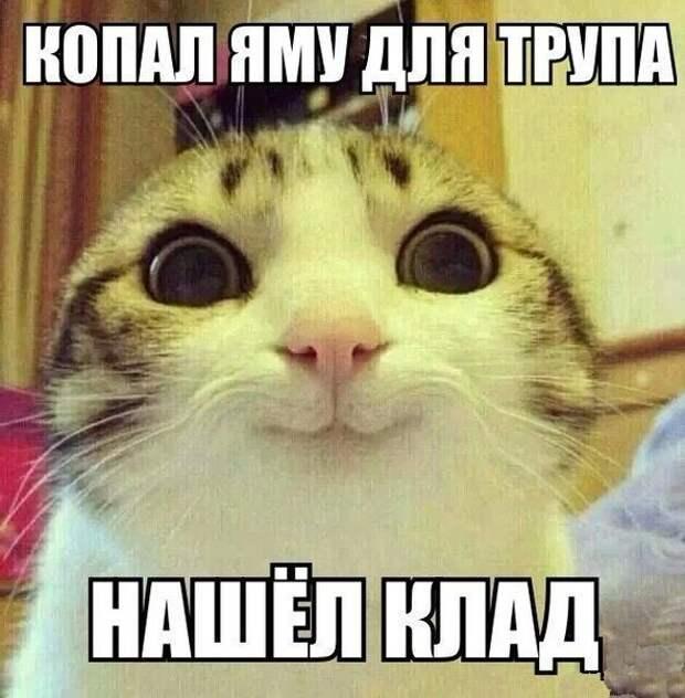 1477474333_memy-5