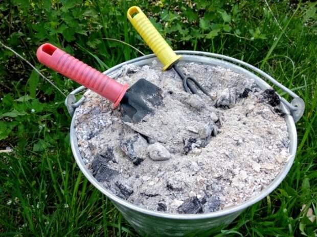 Вот золу в ведро сегодня как-то не додумаются насыпать. /Фото: 404content.com