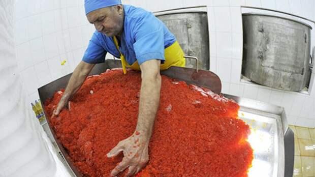 Рабочие-миллионеры? Зарплаты на заводе по производству красной икры на Камчатке
