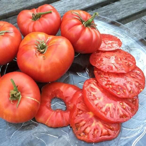4121583_pomidorybalkonenovate2 (700x700, 111Kb)
