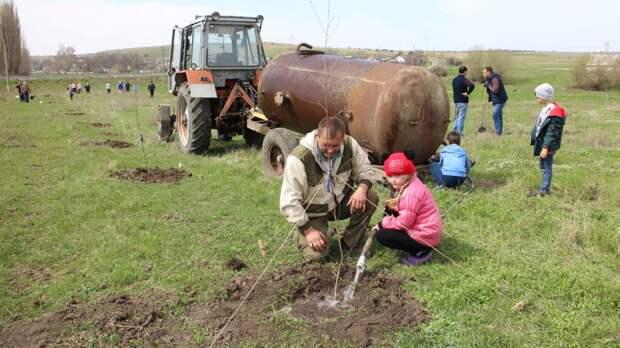 Посадили 57 березок: В Донском сельском поселении прошел субботник