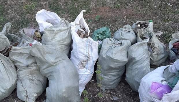 Берег реки Пахры в Подольске очистили от мусора