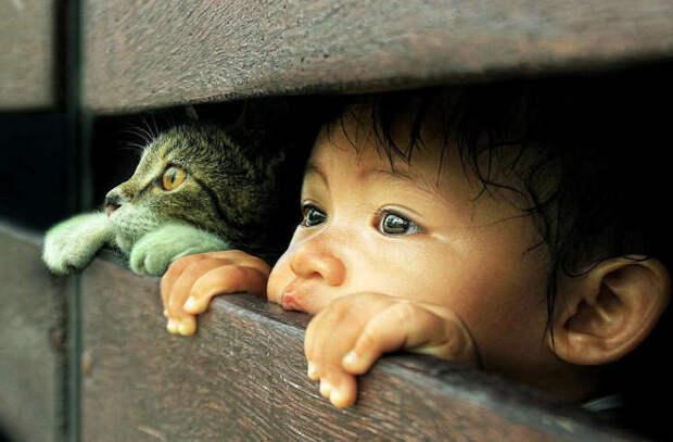 Самые любопытные дети могут вырасти самыми умными