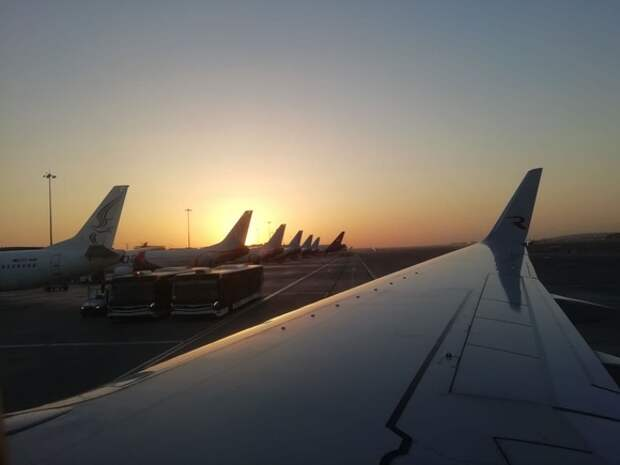 Bloomberg: Возобновления авиасообщения между Россией и Турцией не стоит ждать раньше середины июня