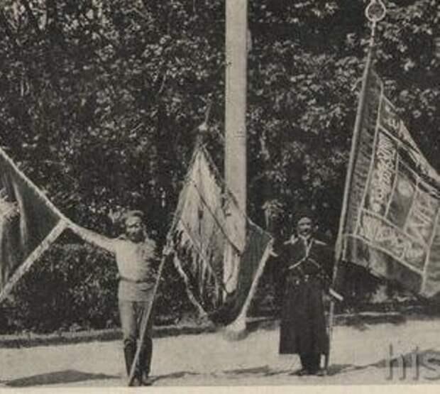 «Верните честь» – в Турции требуют возврата Россией османских знамён