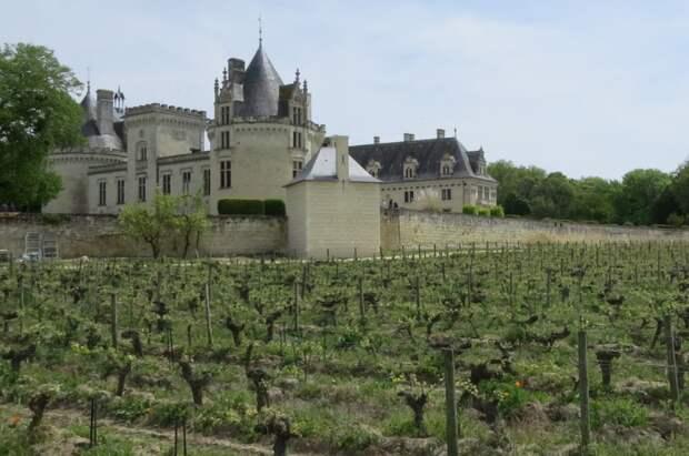 Окрестности замка Брезе