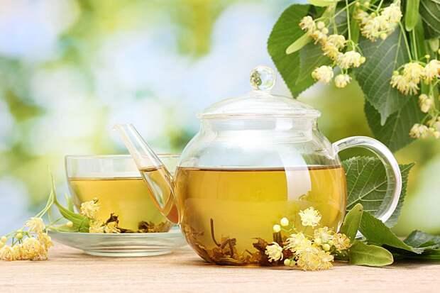 Травы вместо чая. 5 травяных настоев, которые поддержат здоровье