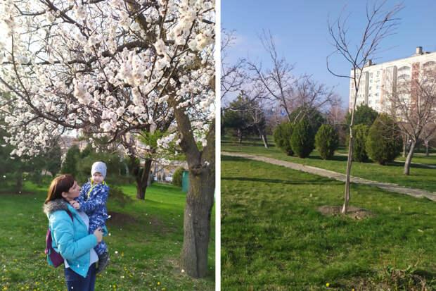 «Сначала была эйфория»: истории сибиряков, переехавших в Сочи, Анапу и Краснодар. Сколько нужно денег и чем они недовольны?