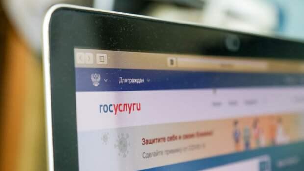 ГРЧЦ выступил за легализацию доступа к порнографии в России через госуслуги