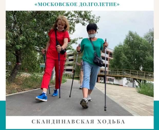 В Лефортове приглашают пенсионеров для занятий скандинавской ходьбой