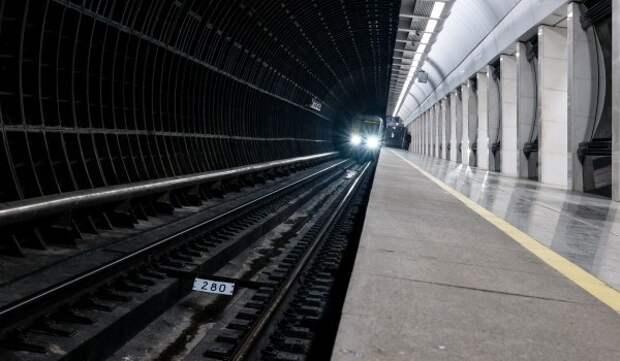 К проекту соединения Бирюлевской и Рублево-Архангельской приступят после 2025 года