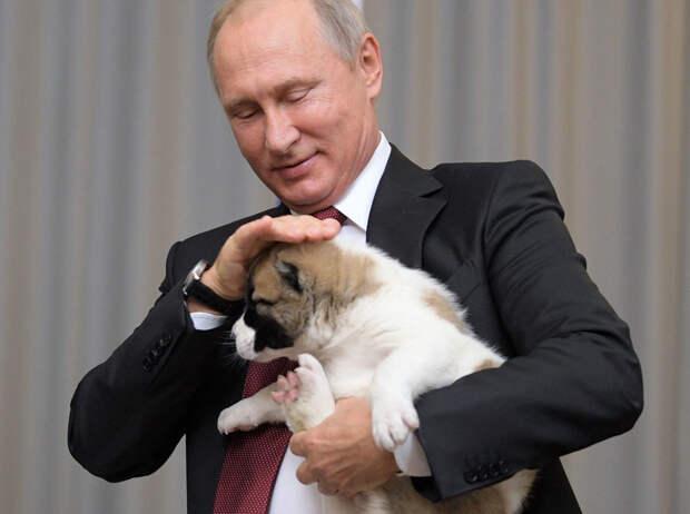 Фото © ТАСС/пресс-служба президента РФ/Алексей Дружинин