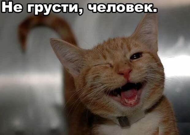 http://cs320118.vk.me/v320118242/1320/z7jsclGC9pk.jpg