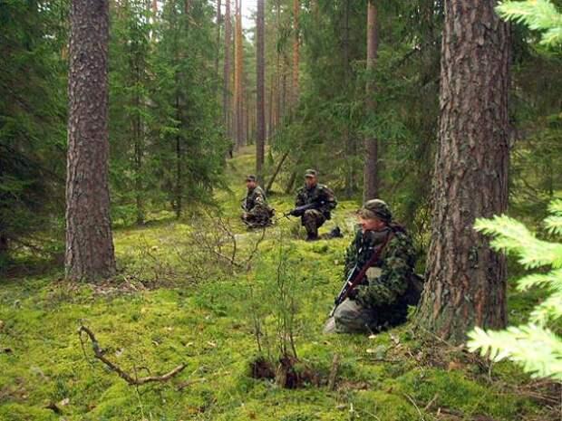 Зловещая находка ополчения ЛНР на границе с Россией: решение последовало незамедлительно