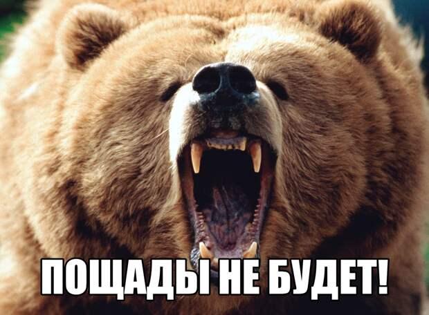 Ну что, сволочи, разбудили медведя? Теперь молитесь!