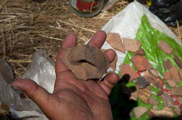 В Новоазовском районе археологами обнаружены уникальные находки времен Золотой Орды
