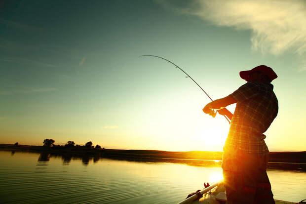 Шустрая рыбалка