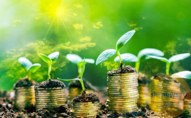 """Экономика должна быть """"зеленой"""". США ждет рост при Джо Байдене"""