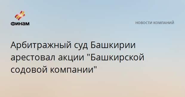 """Арбитражный суд Башкирии арестовал акции """"Башкирской содовой компании"""""""
