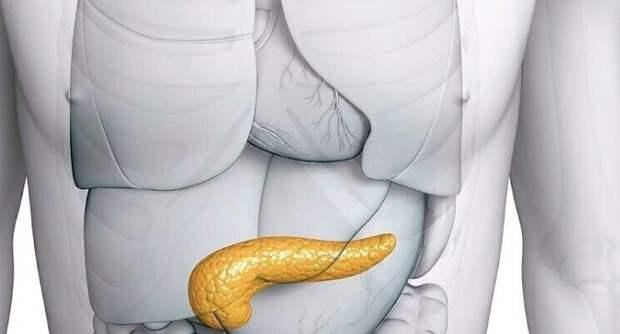 Народные средства для лечения поджелудочной железы
