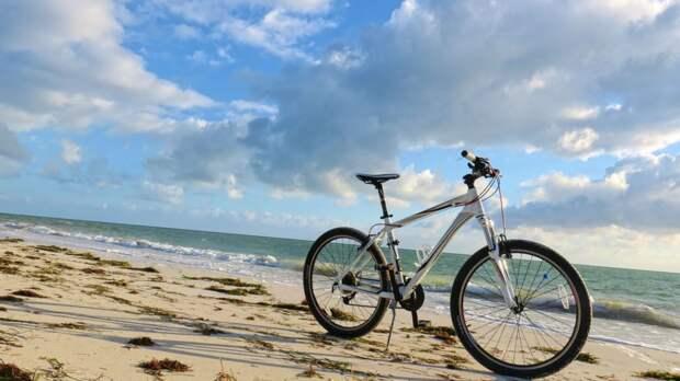 Совершенно не имеет значение, что вы выберете: плавание, велосипед или просто ходьбу.