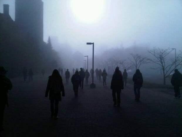 Реальные снимки которые выглядят как кадры из фильмов ужасов