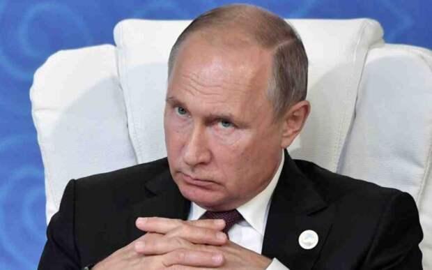 Против Путина, Байден – комнатное растение. И это говорят американцы