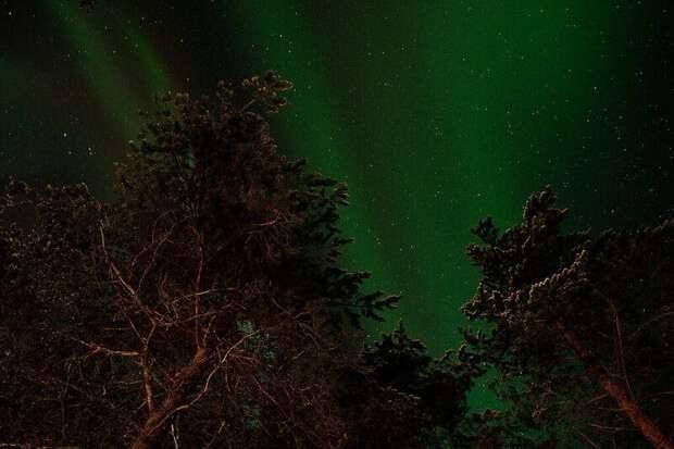 28 атмосферных мест Карелии
