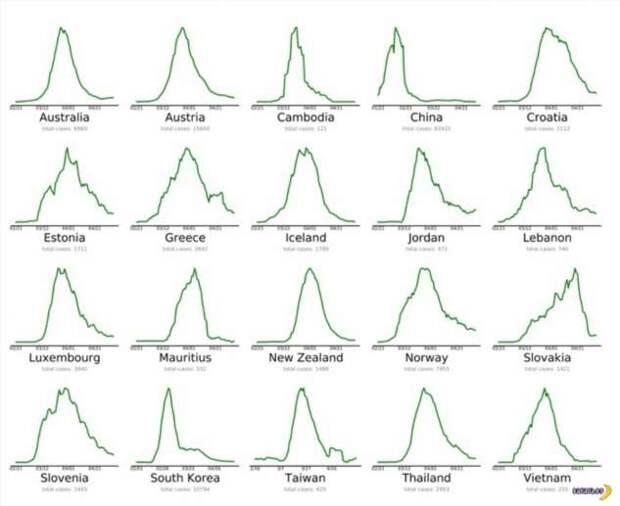 Есть три типа графиков по коронавирусу