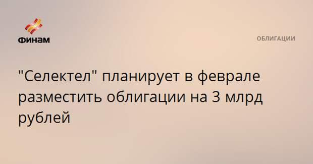 """""""Селектел"""" планирует в феврале разместить облигации на 3 млрд рублей"""