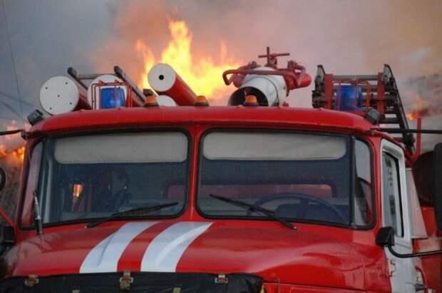 Двое детей стали жертвами пожара под Тулой