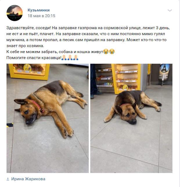 """Скриншот из паблика """"Кузьминки"""" в социальной сети ВКонтакте"""