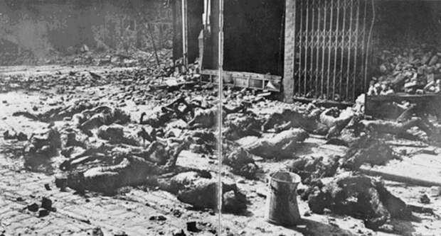 Останки жертв бомбардировки Гамбурга. <br>