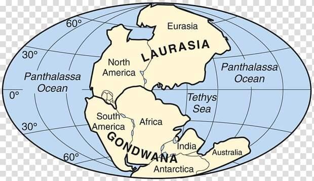 А был ли континент?