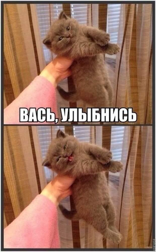 _uvHEomm1lQ