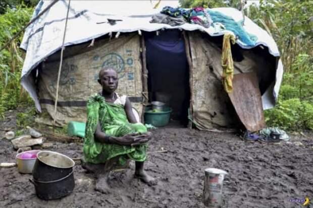В объективе Африка — сентябрь 2020