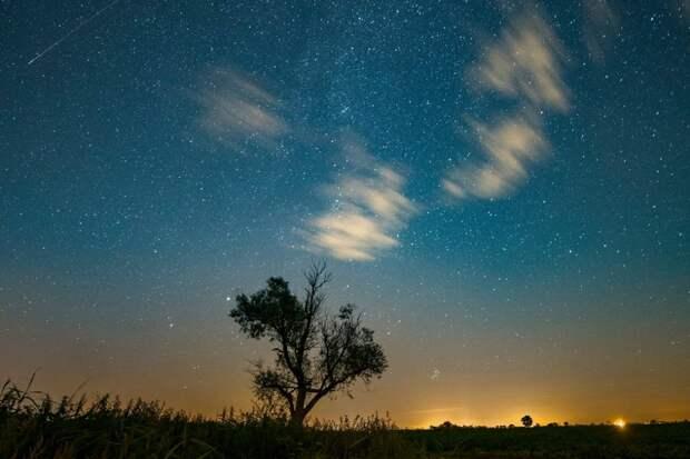 Самый зрелищный метеорный поток Персеиды за последние 7 лет