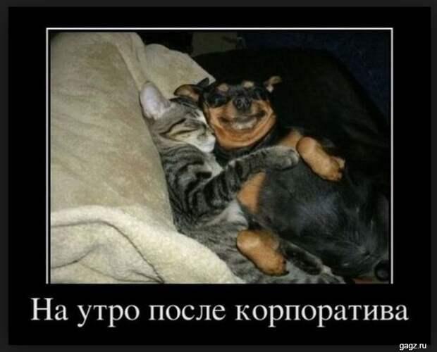 demotivator_prikol_gagz_ru_14458563