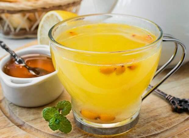 Облепиха на зиму: простые рецепты вкусных домашних заготовок