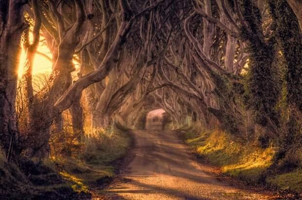35 волшебных мест на земле, которые стоит посетить хотя бы раз в жизни