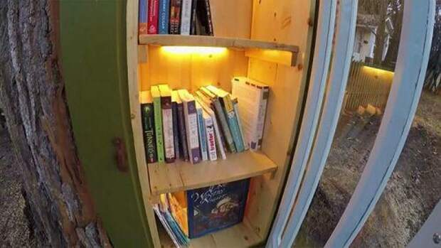 Библиотека из тополя