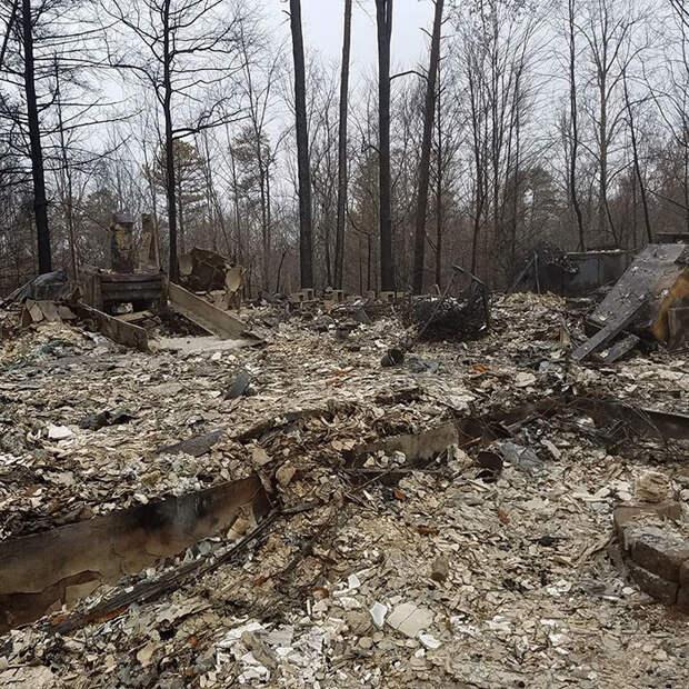 На следующее утро Роб узнал, что его дом сгорел дотла  животные, питомец, пожар, хряк