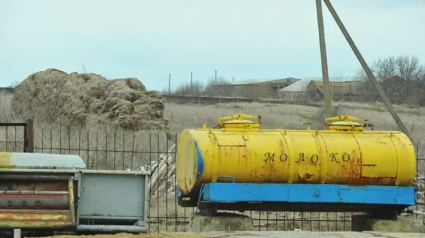 Житель Херсонщины обескуражил киевское ТВ рассказом о бедах украинских сел