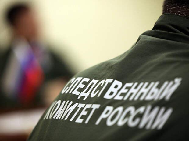 В СК РФ подтвердили проверку колонки краеведа, которому не нравится, как сейчас празднуют День Победы