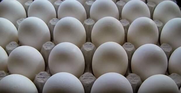 Берем яйца. /Фото: youtube.com.